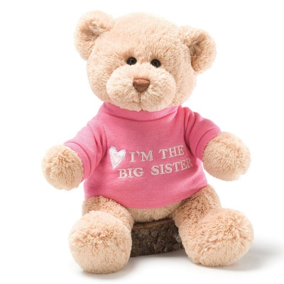 Gund I am the Big Sister Teddy Bear