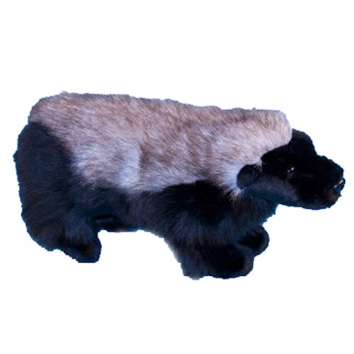 Dowman Honey Badger Plush Soft Toy