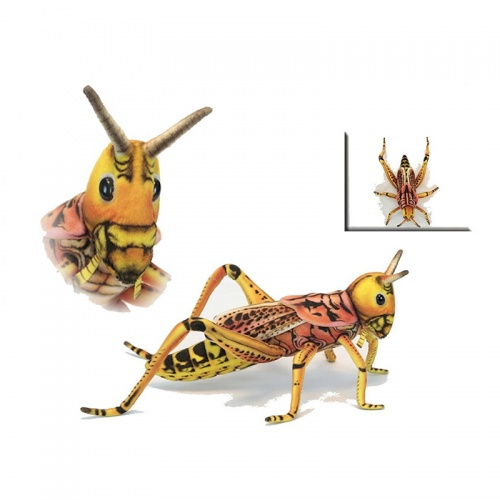 Hansa Locust Grasshopper Plush Soft Toy Insect