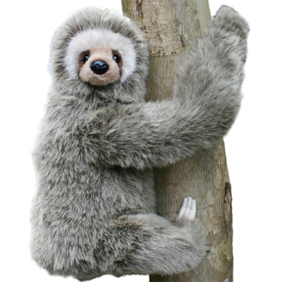 3 Toed Sloth Soft Toy
