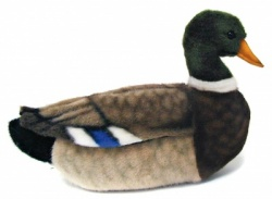Mallard Duck Plush Soft Toy