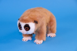 Dowman Slow Loris 24cm Plush Soft Toy