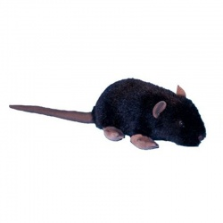 Dowman Black Rat Large 32cm Plush Soft Toy