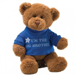 Gund I am the Big Brother Teddy Bear