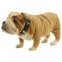 Bulldog Plush Soft Toy