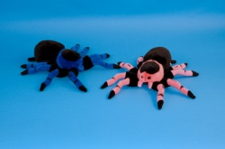 Dowman 22cm Spider Soft Toys Choice of 2 colours