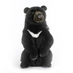 Hansa Taiwanese black bear sitting 23cm Soft Toy