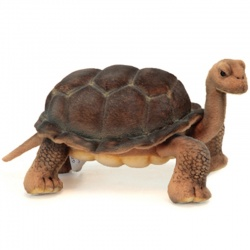 Hansa Galapagos Turtle 30cm Plush Soft Toy